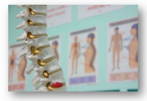 Abnormal Posture and Spinal Misalignment Increases Degeneration